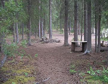 Campsite above Swift River