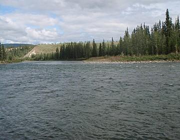 Big Salmon scenery