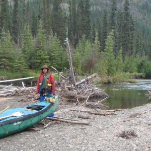 Big Salmon River - Guide Book - ebook Log Jams